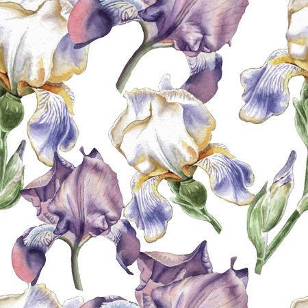 fragrant bouquet: Seamless pattern with watercolor flowers. Iris Hand drawn.