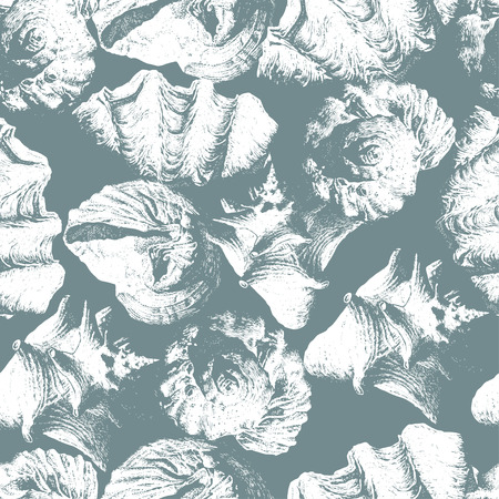 cockle: Seamless pattern with different shells. Vector. Hand drawn. Illustration