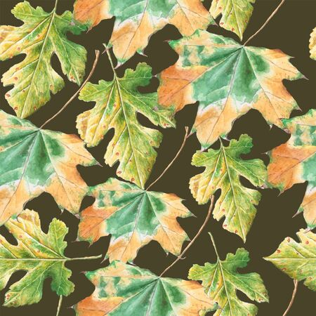 herbarium: Seamless pattern with  autumn leaves. Watercolor. Hand drawn.