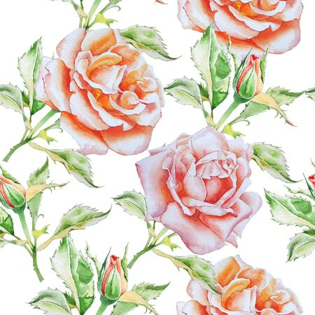 botanical garden: Seamless pattern with watercolor roses.  Watercolor. Hand drawn.