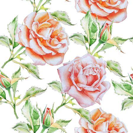 수채화 장미와 원활한 패턴입니다. 수채화. 손으로 그린.
