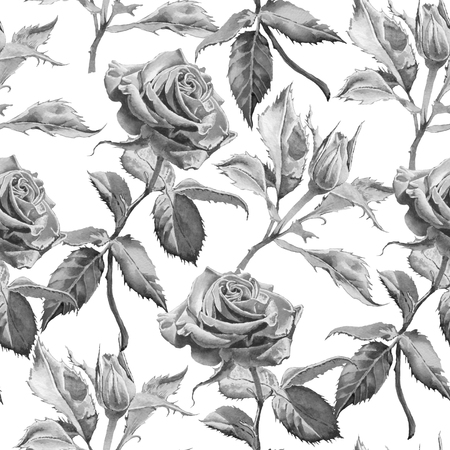 white roses: Monochrome seamless pattern with roses.  Hand drawn.