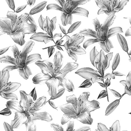 in bloom: Monochrome seamless pattern  with lilies.  Watercolor.  Hand drawn.