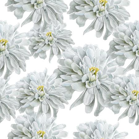 macro flowers: Seamless pattern with flowers. Chrysanthemum. Watercolor. Hand drawn. Stock Photo