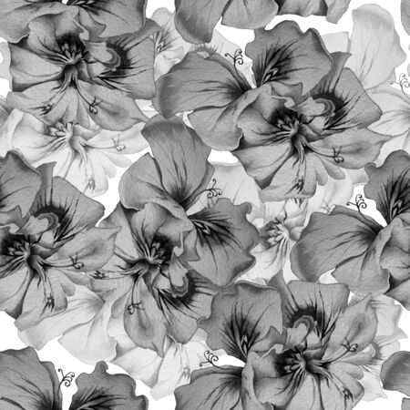 Monochrome seamless pattern with flowers. Watercolor illustration. Hand drawn
