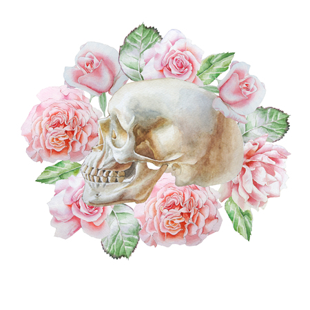 Skull and flowers. Watercolor illustration. Stock Photo
