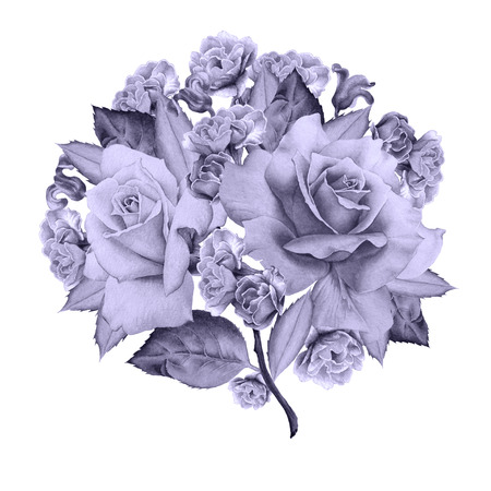 꽃과 수채화 꽃다발입니다. 장미. 히아신스. 삽화. 손으로 그린. 스톡 콘텐츠