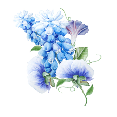 Watercolor bouquet with flowers.  Petunia.  Pansies. Hyacinth. Watercolor illustration. Hand drawn. 스톡 콘텐츠