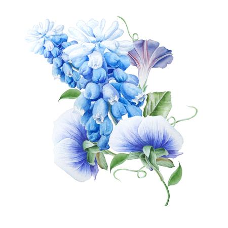 꽃과 수채화 꽃다발입니다. 피튜니아. 팬지. 히아신스. 수채화 그림입니다. 손으로 그린.