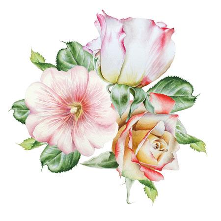 Waterverfboeket met bloemen. Roos. Kaasjeskruid. Aquarel illustratie. Hand getekend.