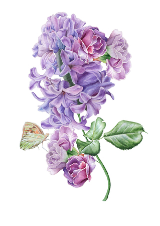 Watercolor bouquet with flowers. Lilac. Butterfly. Illustration. Hand drawn. Stock Photo
