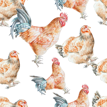 Seamless pattern with   cock and  hen.  Watercolor illustration. Hand drawn. 스톡 콘텐츠