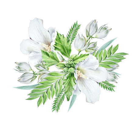 Watercolor bouquet with flowers.    Mallow. Yucca. Watercolor illustration. Hand drawn. Zdjęcie Seryjne