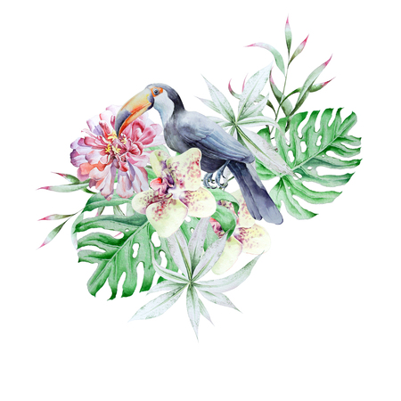 Tropical set with birds leaves and flowers. Peony. Tucan.  Monstera. Orchid.   Watercolor illustration. Hand drawn. Imagens