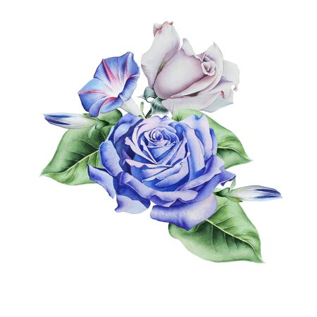 Watercolor bouquet with roses.  Illustration.  Hand drawn.