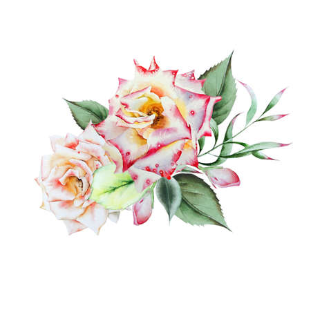 Watercolor bouquet with flowers. Illustration. Rose. Hand drawn. Фото со стока