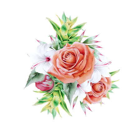 Watercolor bouquet with flowers. Rose. Hibiscus. Bromeliad. Illustration. Hand drawn. 写真素材 - 159485966