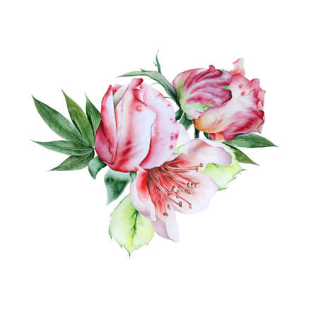 Watercolor bouquet with flowers. Rose Illustration. Hand drawn.