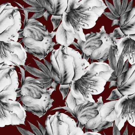 Monochrome seamless pattern with flowers. Rose. Watercolor illustration. Hand drawn.