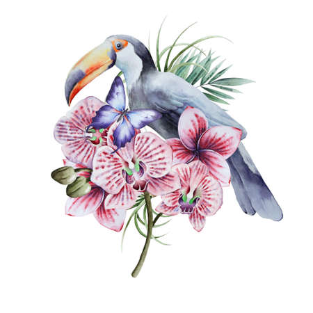 Illustration with tropical bird and flowers. Tucan. Orchid. Watercolor illustration. Hand drawn. 版權商用圖片
