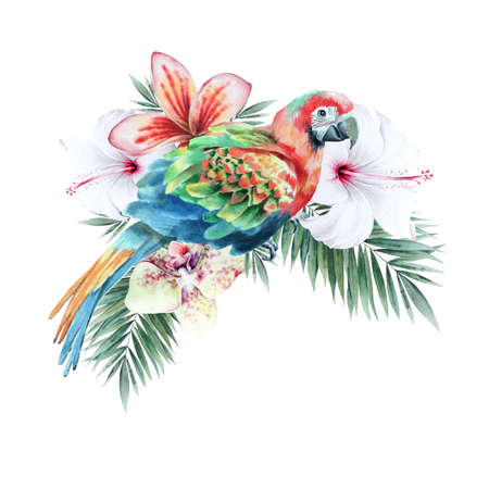 Illustration with tropical parrot and flowers. Hibiscus. Palm. Orchid. Watercolor illustration. Hand drawn.