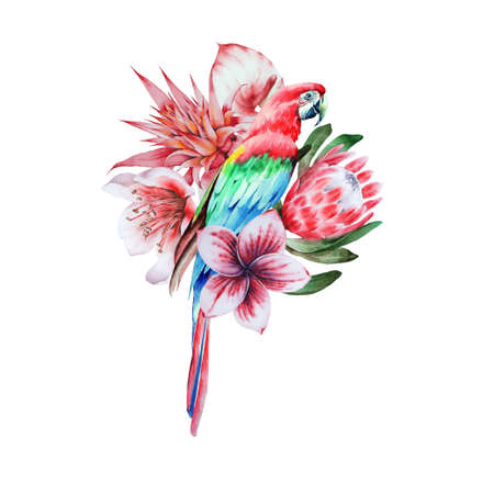 Illustration with tropical parrot and flowers. Watercolor illustration. Hand drawn.