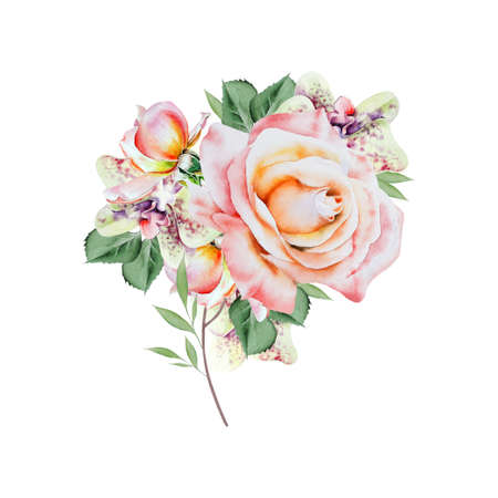 Watercolor bouquet with flowers. Rose. Orchid. Illustration. Hand drawn. 版權商用圖片