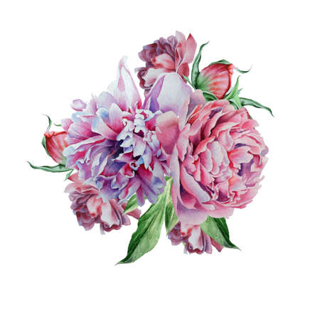 Watercolor bouquet with peony. Hand drawn.