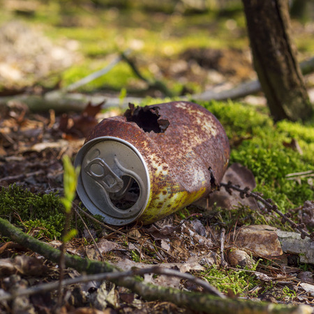 rusty soda can in the forest