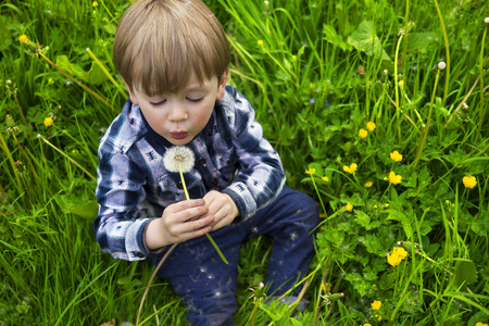 naturally: cute little kid holding a dandelion