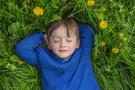 daydreaming: adorable child daydreaming in a field of flowers