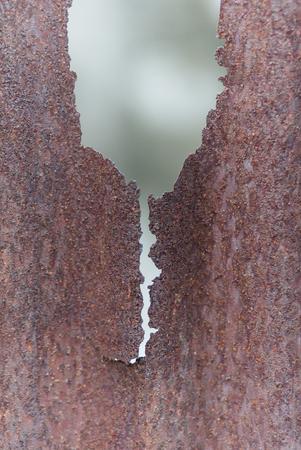 rusty: Rusty zinc