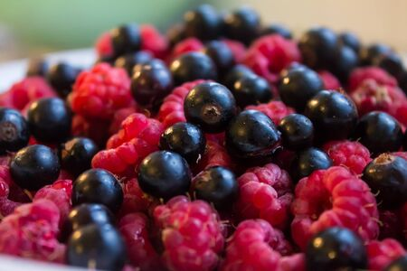 Black currants and pink  raspberries on plate Stock Photo