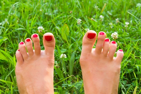 legs on green grass Stock Photo