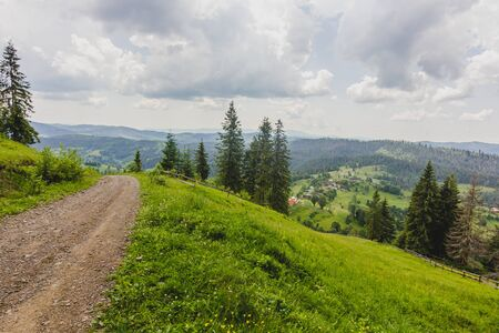 Road in green summer pasture with wooden fence on farm in Carpathian mountains in Ukraine Reklamní fotografie