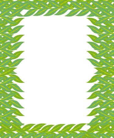 fall leaves border: green frame leaf vector  Illustration