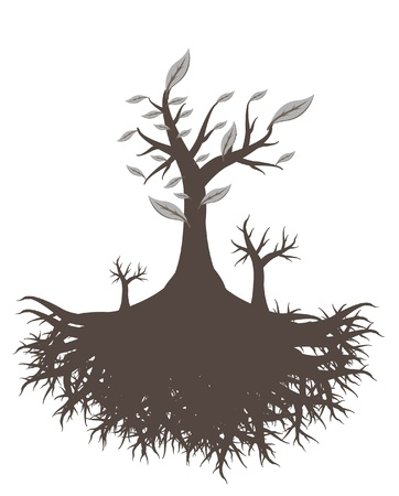 plant with roots: old tree root  Illustration