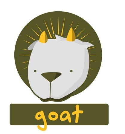 baby goat: goat
