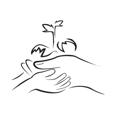 hand holding plant: Hand Holding Green Plant