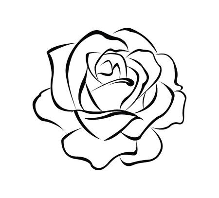 로즈 꽃 일러스트
