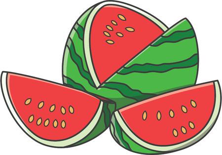 summer diet: Watermelon vector cartoon illustration