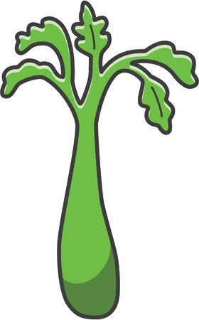 celery: celery Illustration