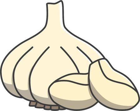 unpeeled: White onion Illustration