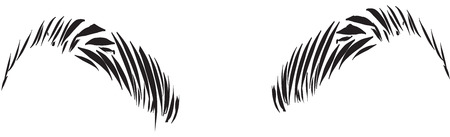 vector art: eyebrows black and white simple line illustration