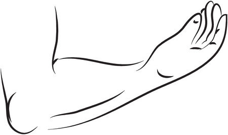 avant-bras ilustration Vecteurs
