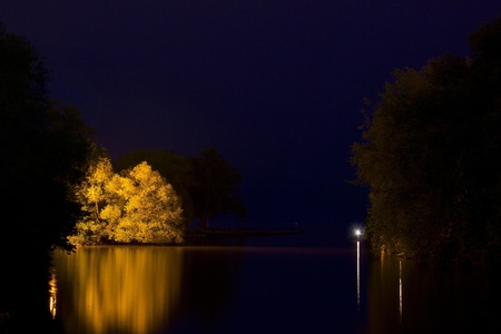 Tree reflection on a lake photo