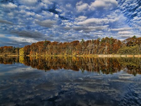 forest reflection on shoreline Stock Photo