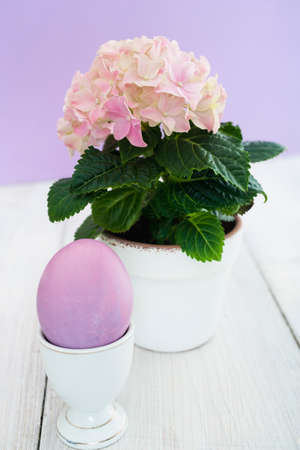 eggcup: Pink easter egg in eggcup and hydrangea in flowerpot