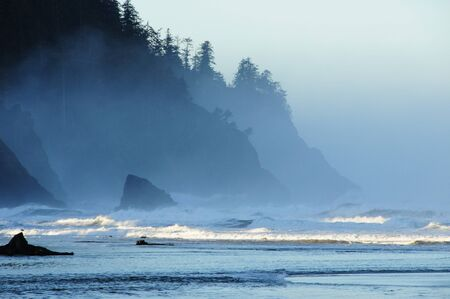 Blue misty morning at the cliff on the edge of the edge of the Pacific Ocean at Neskowin, Oregon.