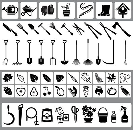 garden design: Garden and nature icons with fruits, vegetables, leaves, fruits and garden tools Illustration